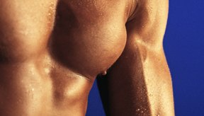 Obtener músculos