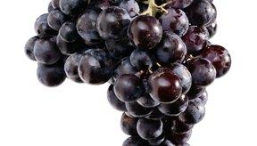 Las uvas contienen taninos.