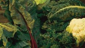 Las verduras de hoja verde son ricas en potasio, un factor clave en la reducción de la presión arterial.