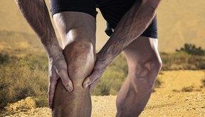 Nutrición para fortalecer tendones y ligamentos