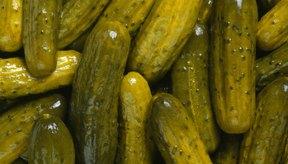 Los pepinillos dulces tienen beneficios para la salud similares a los de los pepinos.