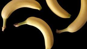 Debes comer plátanos si tienes colitis ulcerosa.