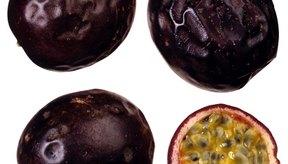 Come fruta de la pasión sola sin la piel.