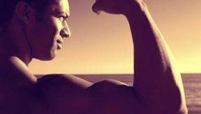 La flexión del bíceps se enfoca en el músculo bíceps.