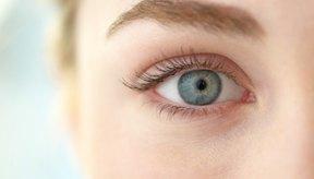 Las glándulas del ojo ayudan a la calidad de la visión.