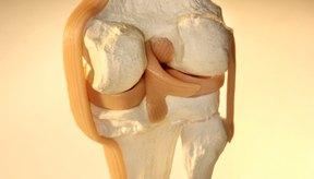 El retináculo lateral ayuda a mantener a la rótula en su lugar.