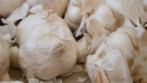 Usa el ajo fresco para aliviar el dolor de muelas.