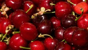 Las cerezas frescas son un alimento de bajas calorías.