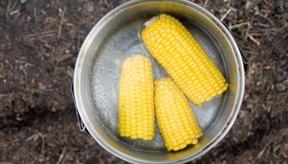 El maíz tiene una nivel de acidez alto.