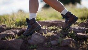 Caminar es una manera de bajo costo y bajo impacto para controlar el peso.