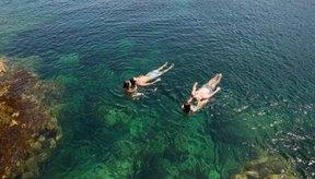 La natación es una actividad física de bajo impacto que te permite acumular puntos por actividad en el programa Weight Watchers.