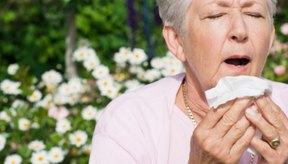 Allegra-D puede ayudar a aliviar los síntomas de la alergia.