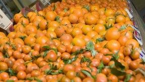 Los cítricos son una buena fuente de vitamina C.