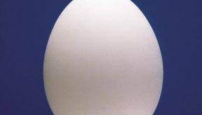 Los huevos y otros alimentos en tu dieta te proporcionan vitaminas que se encuentran en los suplementos de complejo B.