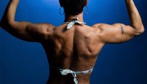 Los deltoides posteriores tonificados dan a la parte de atrás de los hombros una buena apariencia estética.