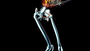 El sedimento de orina puede causar problemas tales como dolor abdominal.