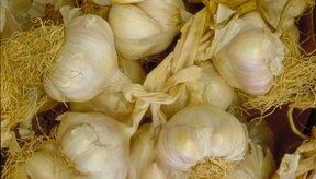 Las propiedades antihongos del ajo crudo lo hacen útil para tratar la candidiasis.