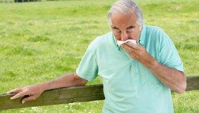 La tos persistente y producitiva es uno de los síntomas de infección tuberculosa.