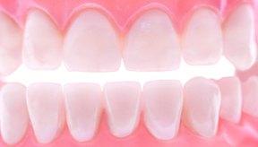 Una dieta sana y equilibrada contiene los nutrientes que tu cuerpo necesita para mantener tus dientes sanos.