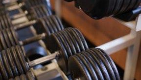 Agregar peso al ejercicio de resistencia incrementa la fuerza.
