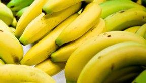 Los plátanos contienen una cantidad significativa de potasio.