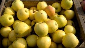 Las manzanas golden delicious recibieron altas calificaciones como una opción saludable.