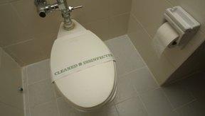 La linaza molida no debería causar diarrea.