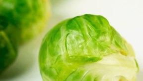 Los vegetales crucíferos son ricos en fitonutrientes que previenen el cáncer.