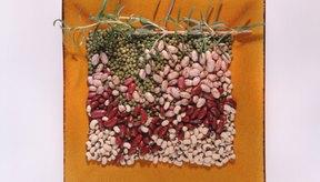 Los frijoles secos están cargados de nutrientes.