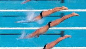 Los nadadores hacen un clavado al inicio de las carreras de estilo libre.