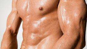 Lleva aproximadamente ocho semanas desarrollar un pecho musculoso.