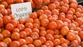 Los tomates son la base de muchas recetas.