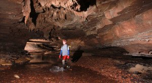 12 Crazy Things You Never Thought About Doing in Tennessee