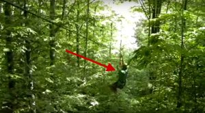 The Screams On This Michigan Zip Line Ride Will Make Your Stomach Sink