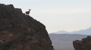 10 Places In Nevada You Must See Before You Die