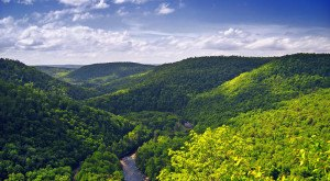 10 MORE Epic Hiking Spots In Pennsylvania