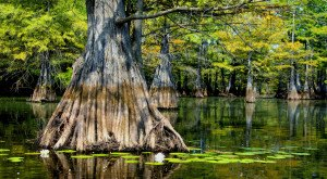 You Don't Want To Miss These 13 Hidden Gems In Louisiana