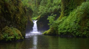 13 Hidden Waterfalls In Oregon That Will Take Your Breath Away