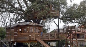 9 Treehouses In Louisiana Where You Can Live Your Fantasy