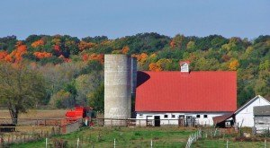 These 11 Farms In Illinois Will Bring Out The Country In You