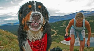 These 14 Hysterical Pictures Taken In Colorado Will Have You Laughing Out Loud