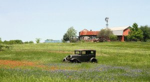 These 12 Charming Farms In Texas Will Make You Love The Country