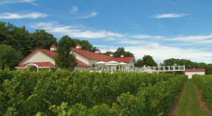 These 9 Beautiful Wineries In Michigan Are A Must-Visit For Everyone