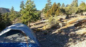 These 10 Amazing Camping Spots In Nevada Are An Absolute Must See