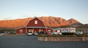 These 11 Ice Cream Shops in Utah Will Make Your Sweet Tooth Go Crazy
