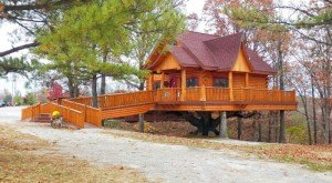 These 6 Tree Houses in Missouri Will Give You an Unforgettable Experience