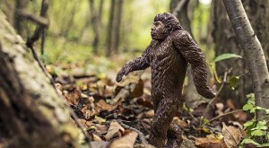 You Won't Believe These 7 Incredible Bigfoot Sightings Caught On Tape In Pennsylvania