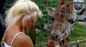 8 Little Known Places In Ohio Where Animal Lovers Should Go
