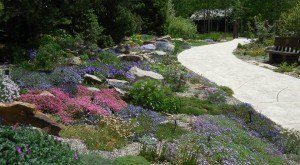 Here Are The 7 Most Beautiful Gardens You'll Ever See In Colorado