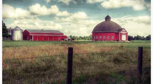 These 12 Charming Farms In Indiana Will Make You Love The Country